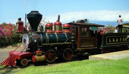sugar-cane-train-maui1