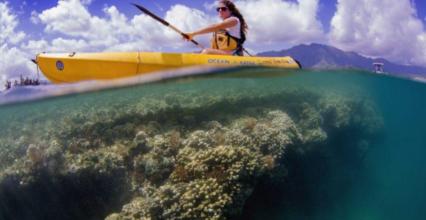 Kayak and Snorkel Rentals