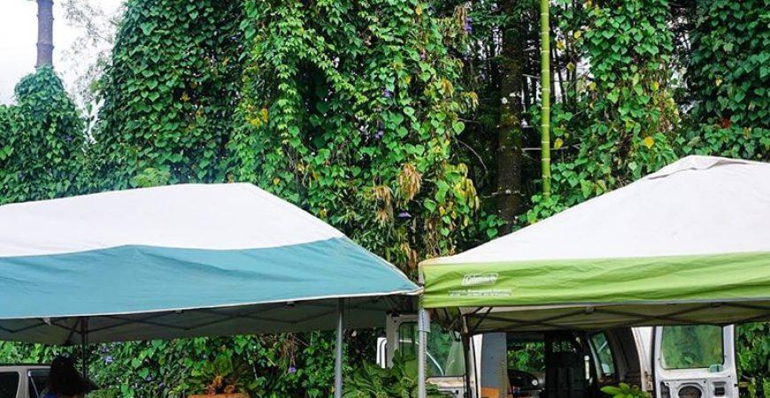 Anaina Hou Community Park Farmers Market