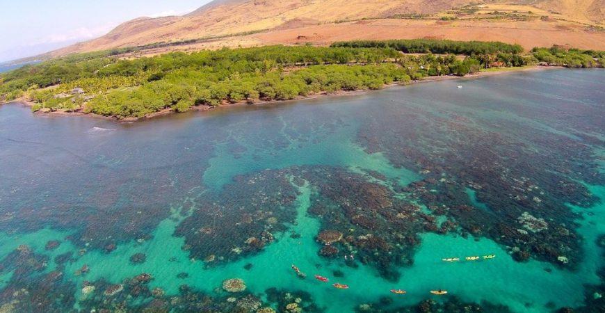 West Maui Kayak & Snorkel Tour