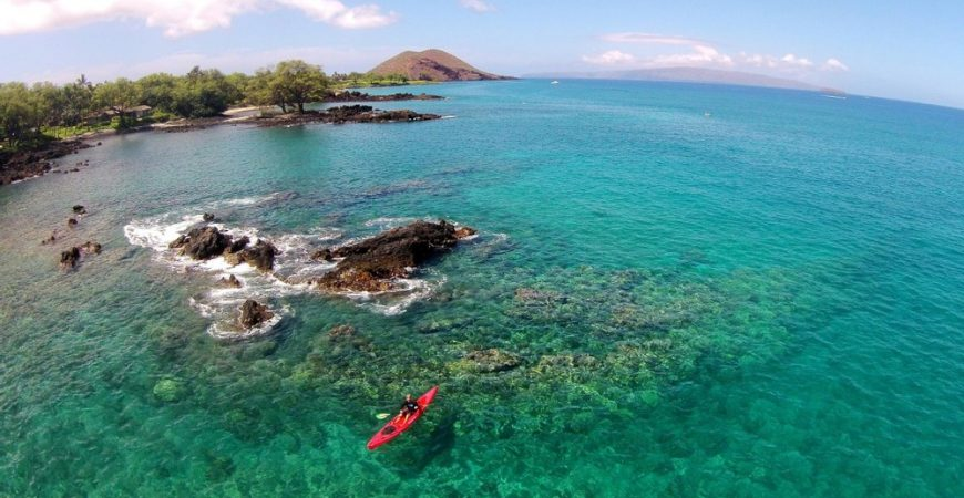 South Maui Turtle Town Kayak and Snorkel