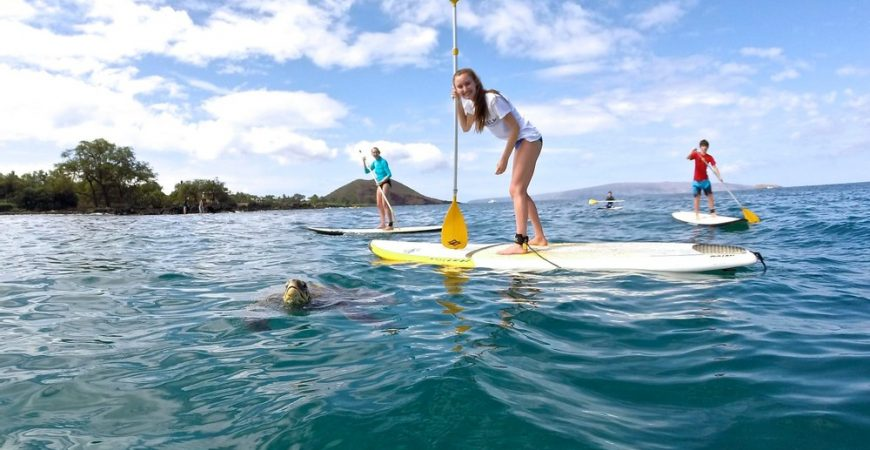 Maui Stand Up Paddle Board Lessons Makena