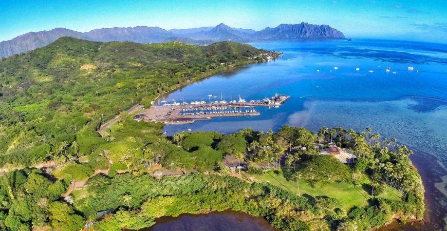 Kayak, Snorkel & Restore the Ecosystem