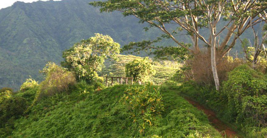 Hiking Shuttle, Kapa'a – Moalepe