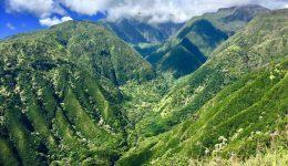 maui-hiking-tour