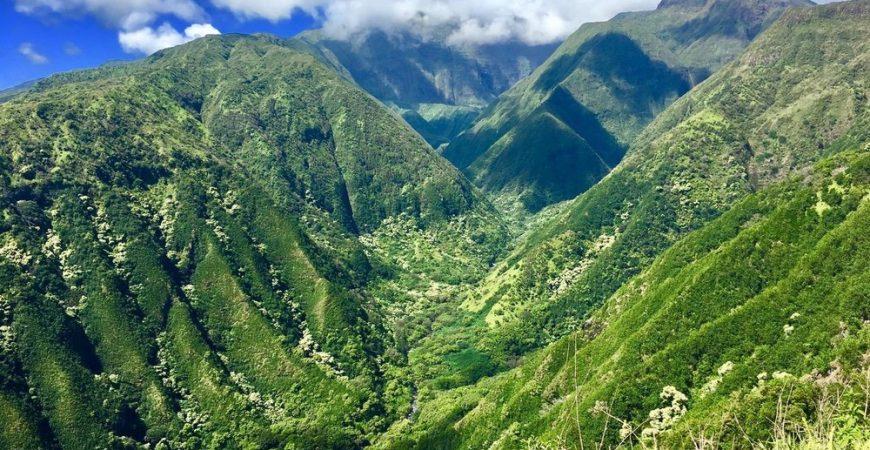 Maui Ridge & Waterslides Hike