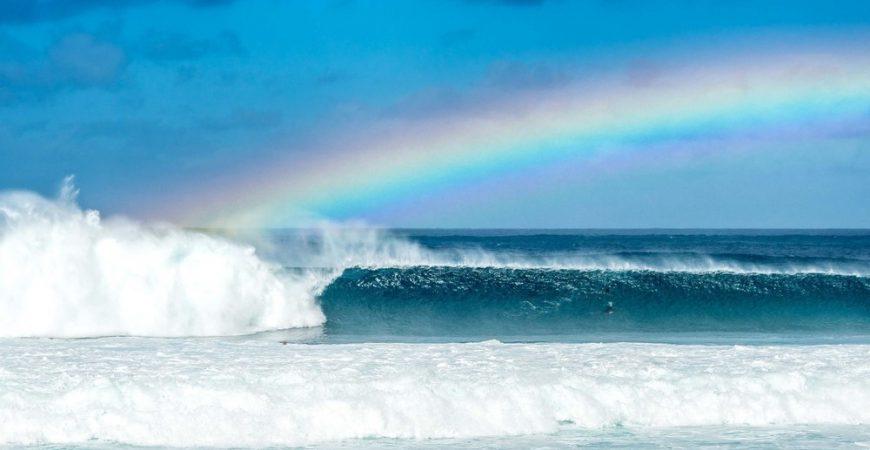 Oahu North Shore Photo Experience