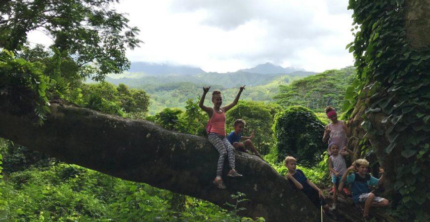 Kuilau Ridge Jungle Trail to Mount Wai'ale'ale