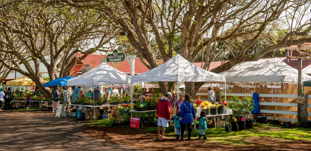 kamuela-farmers-market
